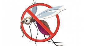 Nyári fertőzések - nyári veszélyek - mire figyeljünk